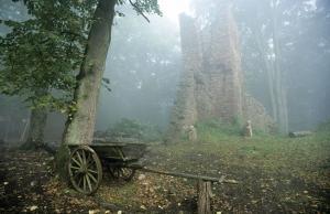 Harald Metzger - Ruine Wildenstein im Nebel