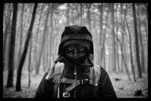 Fotowettbewerb_2021_Q2