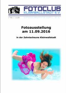 Ausstellung_Zehntscheune_2016_Fotos