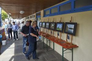 Ausstellung_Mainauen_Oekomarkt_Kleinwallstadt