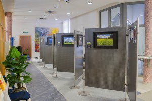 Ausstellung_Mainauen_Raiffeisenbank_Kleinwallstadt
